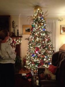 USAクリスマスツリー